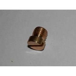DELLORTO DHLA/DRLA PUMP WEIGHT CAP SCREW-7513